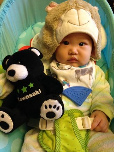 Star Bear 熊布偶 KAWASAKI